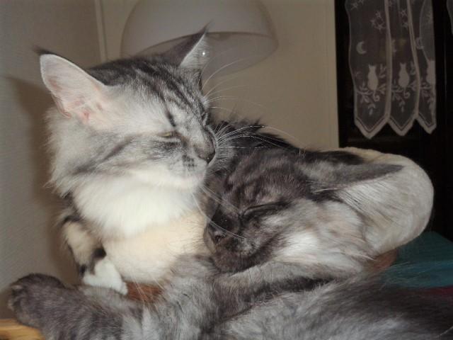 Superbe intimité!